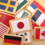 懲罰的損害賠償を命じる海外の判決は日本で強制執行できますか?